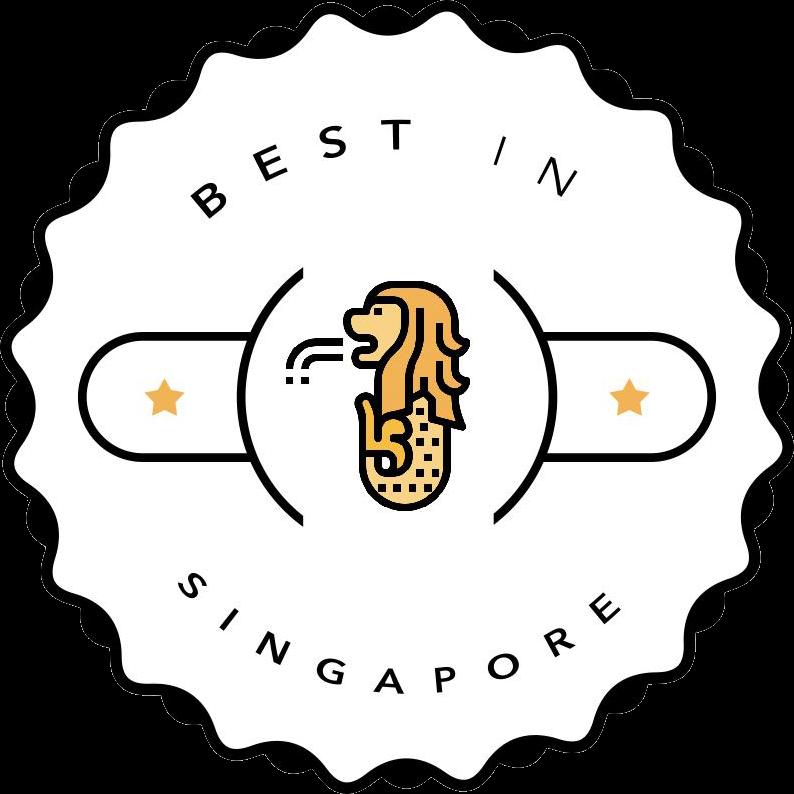 best-in-singapore-logo-water-heater-city-singapore